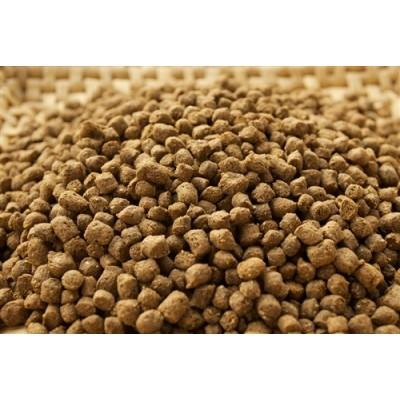 Fish Feed - Foreign